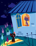 Serenata dei gatti alla notte Fotografia Stock Libera da Diritti