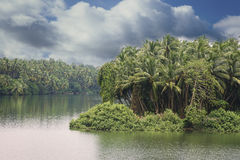 Serene backwaters at Kerala Royalty Free Stock Images