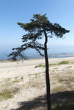 Serene Baltic sea. Stock Image
