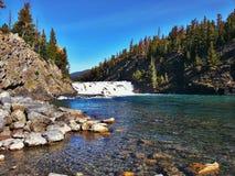 Serene Banff Falls Amongst den majestätiska skogen av den Banff nationalparken Arkivbild