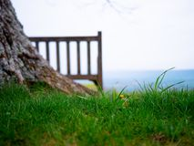 Serene Bench Overlooking Valley royaltyfria bilder