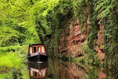 Serene canal boating. A narrowboat glides serenely down the Staffordshire and Worcestershire canal, in the lush vegetation of summer. Taken in the West Midlands Stock Image
