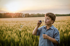Serene boy blowing up the soap bubbles on field Royalty Free Stock Image