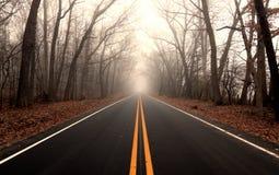 Serene Country Road através de uma floresta nevoenta fotos de stock