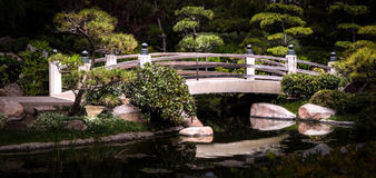 Serene Garden Bridge Stockbilder