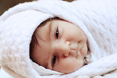 Serene infant Royalty Free Stock Image