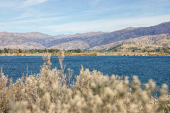 Serene Lake Royalty Free Stock Photography