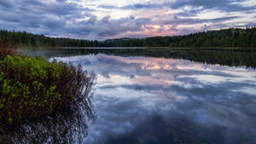 Serene lake reflection with purple sky. And foreground plants Royalty Free Stock Photos