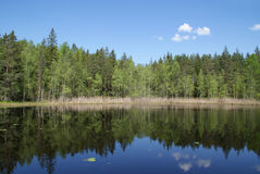 Serene Lake Scenery in Finland. Forest and sky reflected on the calm surface of a rural lake in South of Finland Stock Photography