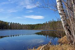 Serene Lake Scenery in Finland Stock Photo