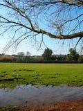 Serene landscape Royalty Free Stock Photos