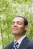 Serene looking businessman Stock Image