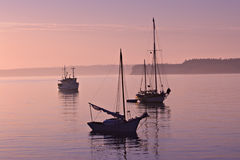 Serene Marina Morning Royalty Free Stock Photos