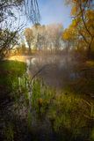 Serene misty morning on a lakeside Royalty Free Stock Photography