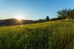 Serene morning on village Royalty Free Stock Photo
