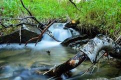 Serene mountain stream in lush green nature. Long exposure shot Royalty Free Stock Photos