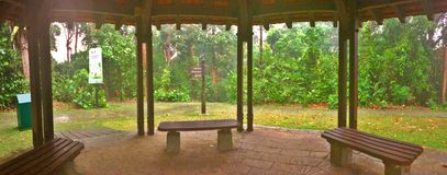 Serene park view. Panoramic view of serene nature from a pavilion in Bukit Batok nature park, Singapore Royalty Free Stock Photography