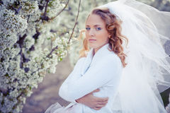 Serene portrait of bride Stock Image