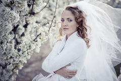 Serene portrait of bride Royalty Free Stock Photos