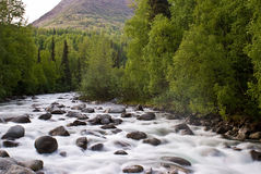 Serene River. Calming whitewater in beautiful Alaska Royalty Free Stock Photo