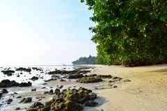 Free Serene Rocky Beach With Lush Green Mangroves On Bright Sunny Day - Vijaynagar, Havelock Island, Andaman, India Royalty Free Stock Photos - 122252318