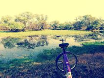 Serene. View with bike Stock Photography
