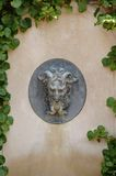 Serene spa fountain. Gargoyle fountain head surrounded by vines Stock Photos