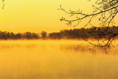 Serene Sunrise bij het Meer Stock Afbeeldingen