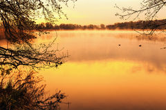 Serene Sunrise at the Lake Stock Images