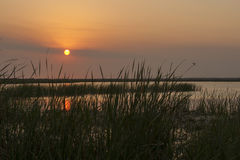 Serene Sunset at the Marsh Royalty Free Stock Photos