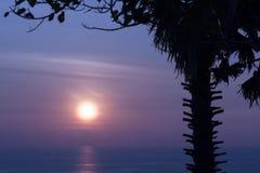 Serene Sunset Royalty Free Stock Photo