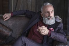 Serene unshaven mature male smoking cigar Royalty Free Stock Images