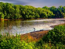 Serene View At The River. Tranquil view by a river in New Jersey on a beautiful day stock image