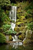 Serene Waterfall på den Portland japanträdgården Arkivbild
