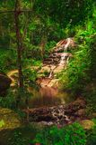 Serene waterfalls through a jungle spring. stock image