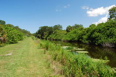 Serene waterway  in a nature preserve in Sarasota Florida. A nature preserve in Florida with a lake and blue skies Stock Images