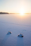 Serene winter morning view to frozen lake Royalty Free Stock Photography