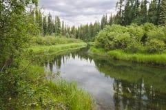 Serene Yukon stream Stock Images