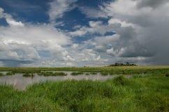 serengeti Fotografía de archivo