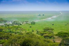 serengeti krajobrazu Zdjęcie Royalty Free
