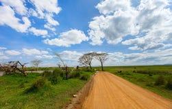 Serengeti nationaal park Royalty-vrije Stock Foto's