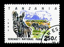 Serengeti National Park, Plains Zebra (Equus quagga), serie, cir. MOSCOW, RUSSIA - MARCH 18, 2018: A stamp printed in Tanzania shows Serengeti National Stock Images