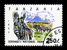 Serengeti National Park, Plains Zebra (Equus quagga), serie, cir. MOSCOW, RUSSIA - MARCH 18, 2018: A stamp printed in Tanzania shows Serengeti National Park Stock Image