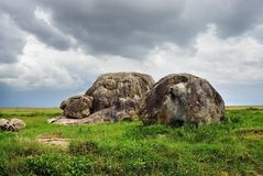 Serengeti national park scenery, Tanzania, Africa Royalty Free Stock Image