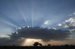 Serengeti National Park sunset Stock Photography
