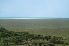 Serengeti plains Royalty Free Stock Photo
