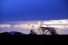 Serengeti profile in the evening Royalty Free Stock Photography