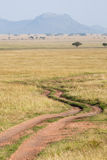 Serengeti road Royalty Free Stock Image