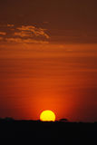 Serengeti Sunrise. A beautiful sunrise in the Serengeti, Tanzania Stock Photos