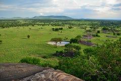 Serengeti, Tanzania, Afrika lizenzfreie stockfotos